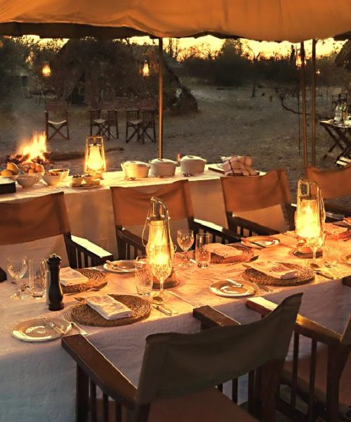 10 safari table setting ideas - The Social Kitchen